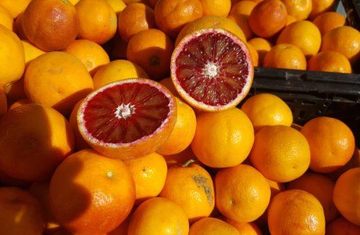blood-orange-2051613