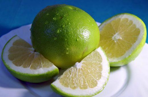 grapefruit-1797816